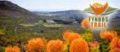 Fynbos Trail - Walker Bay nature reserve