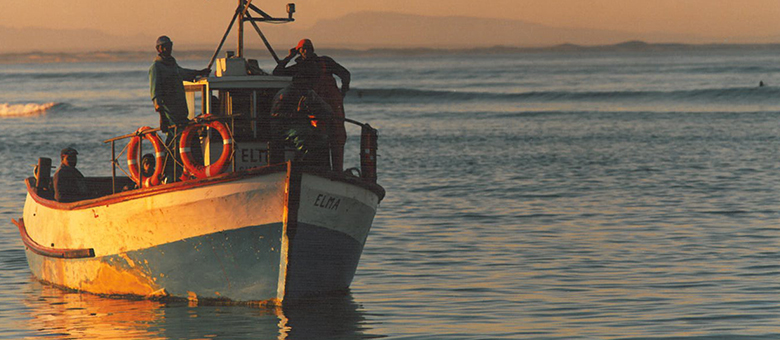 Gansbaai Information, activities, accommodation in Gansbaai, Western Cape, Overberg, South Africa
